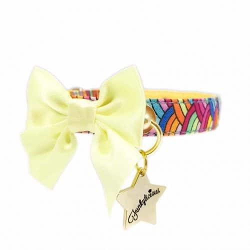 Collar Rainbow Bow Funkylicious