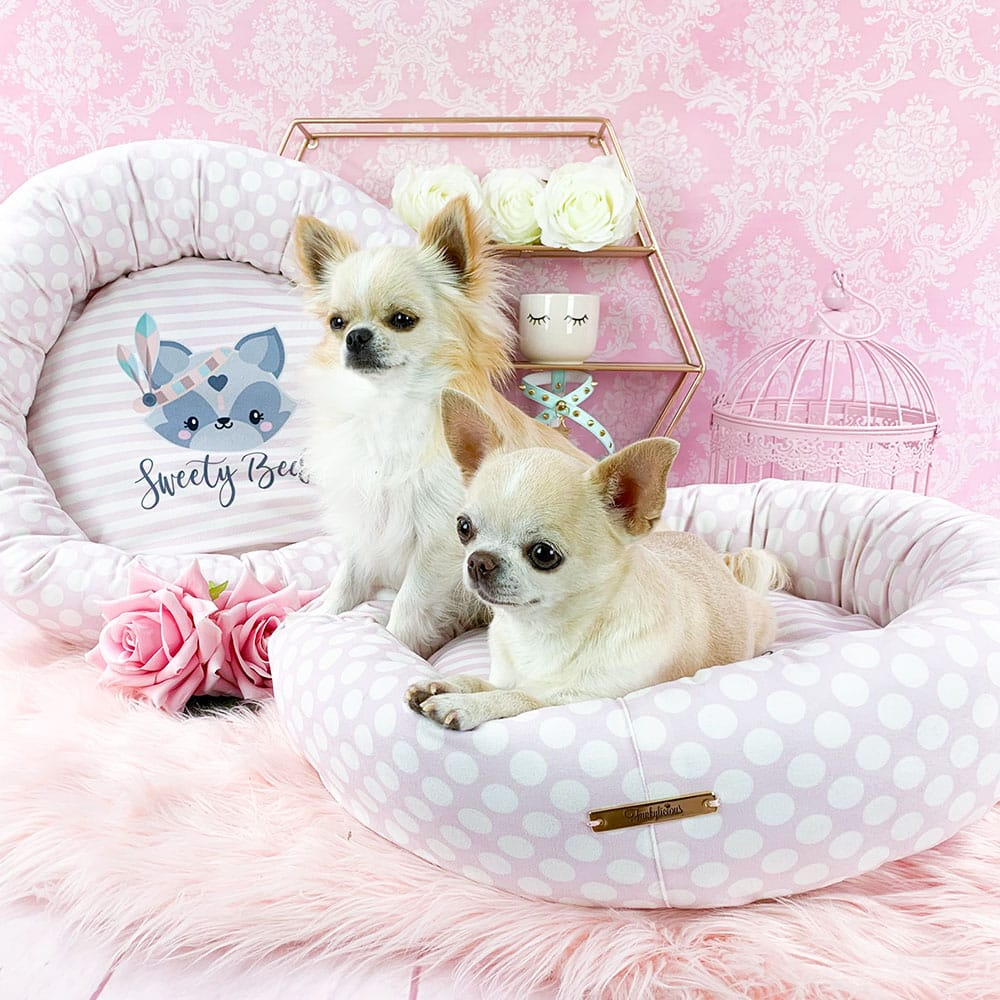 fb2162ae0ccc El Armario de Sugar ~ El Armario de Sugar  Boutique para perros toy ...